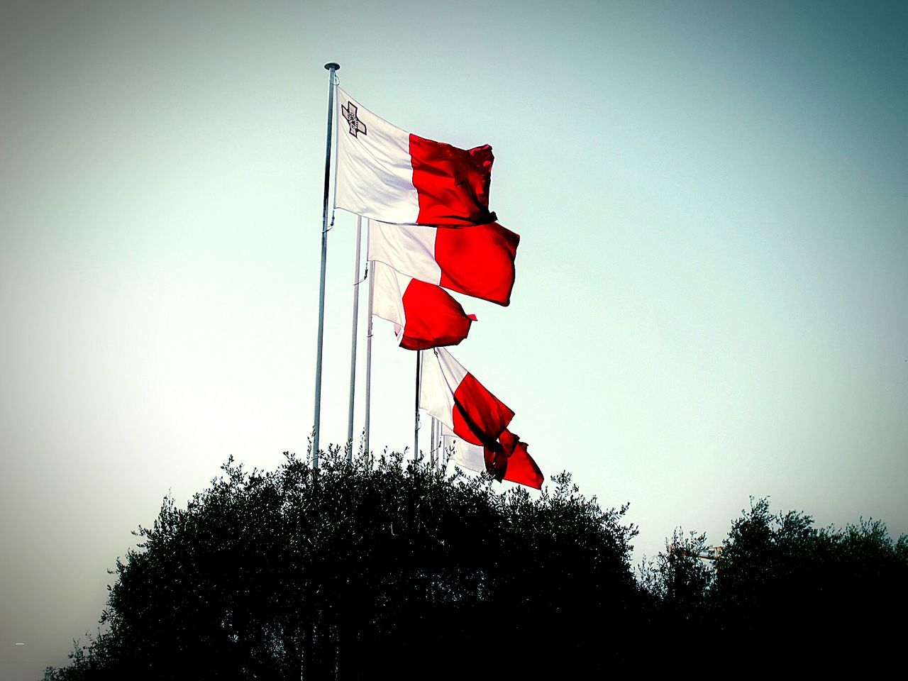 flag, tree, patriotism, low angle view, red, clear sky, no people, day, outdoors, vignette, sky, nature