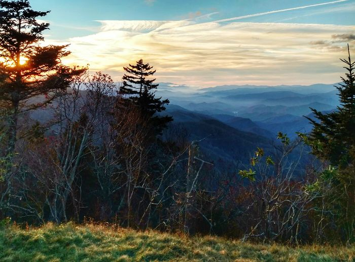 Smokey Mountains sunset up at Water Rock Knob. Tree Nature Sunset Cloud - Sky Landscape Beauty In Nature Outdoors Fall Smokey Mountains, NC Water Rock Knob Fresh EyeEm Betterlandscapes Cell Phone Photography