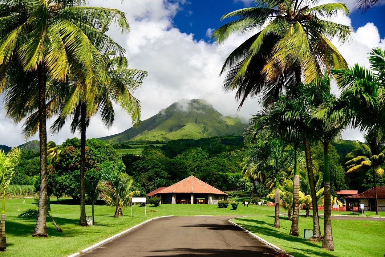 la montagne pelée Carribean Coconut Trees Creole Landscape Mountain Outdoors Sky And Clouds Tropical Climate Volcano Voyage The Great Outdoors - 2016 EyeEm Awards