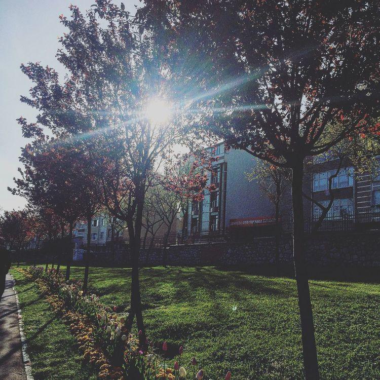 eternal sunshine of the spotless mind Sunday Morning Run A Way Run Run Run Sun Relaxing