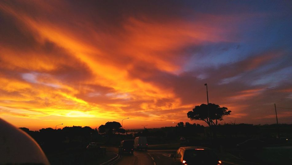 Beauty In Nature Car Cloud - Sky Day IPhoneography Land Vehicle Malta Sunset Mode Of Transport Nature No People Orange Sky Sunset Outdoors Road Sky Sunset Transportation Tree
