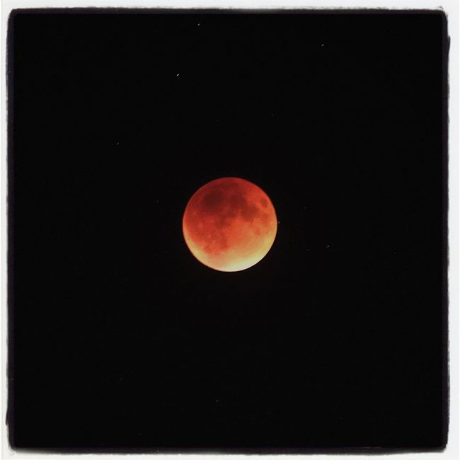 I say, it's a bloody supermoon lunar eclipse. Check This Out Supermoon Super Moon Lunar Eclipse Lunar Eclipse Blood Moon EyeEm Best Shots Bloodmoon2015