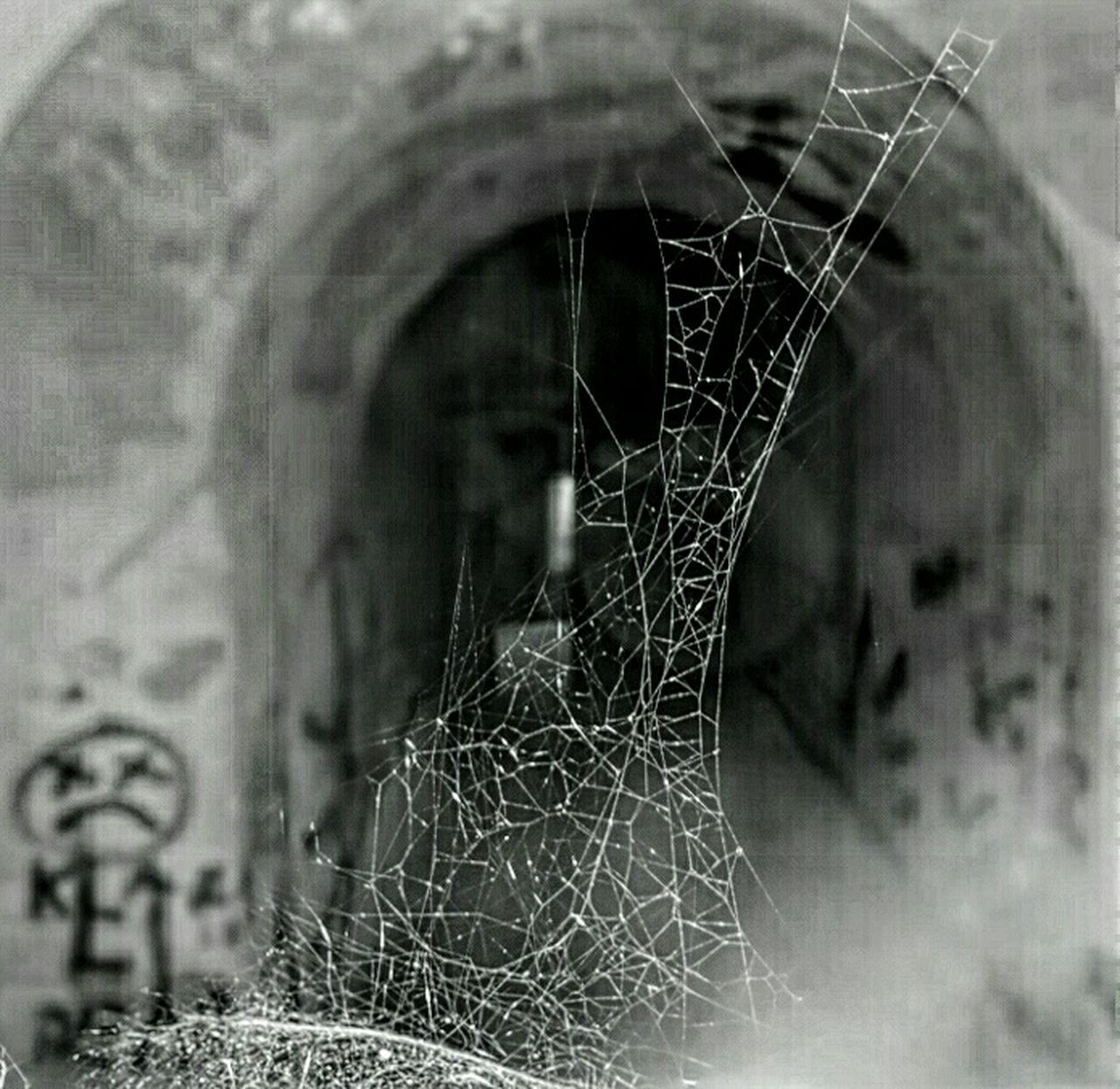 Friday....👻😧😱😨👻.. Bnw_friday_eyeemchallenge Hounted EyeEm_abandonment Minimalobsession Spider Web Graffiti Tunnel Spooky Atmosphere Untold Stories No Lights
