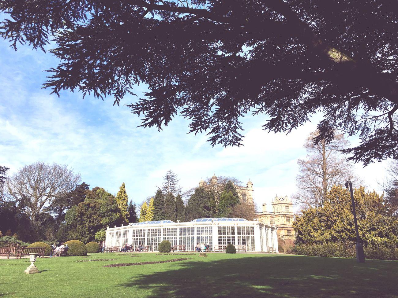 Wollaton Hall Garden Conservatory