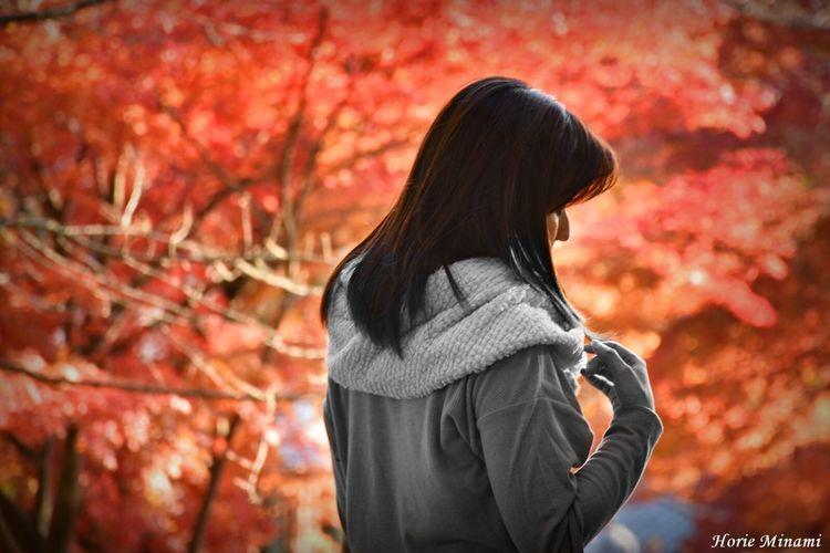 Autumn Week On Eyeem EyeEm Best Shots The Week On EyeEm EyeEm Team EyeEmNewHere Japan Orange Color 紅葉 鶏足寺 長浜市 滋賀県