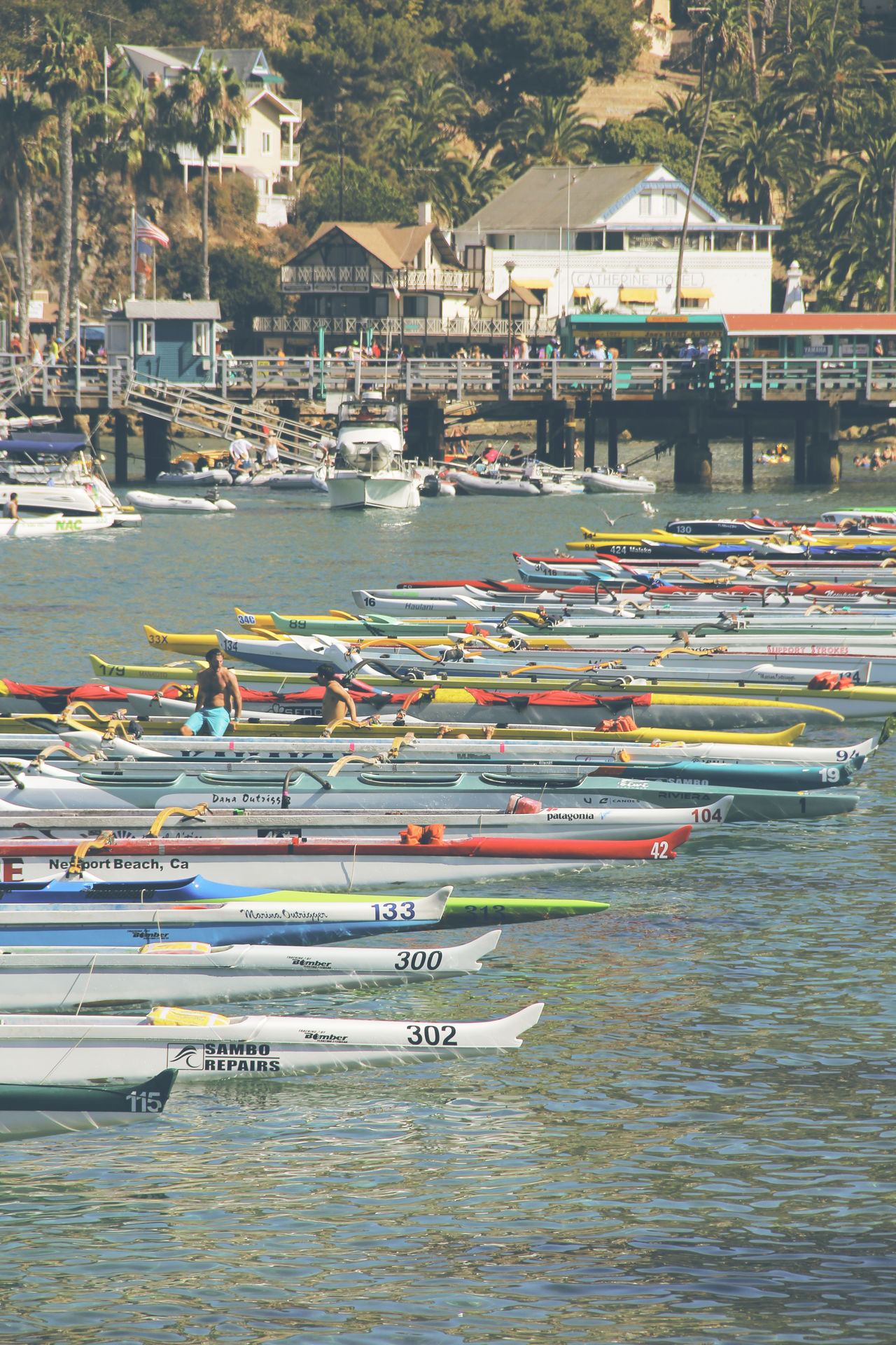 Canoes Catalina Island, Avalon, California Day Nature Ocean Outdoors Pacific Ocean People Pier Racing Sky Water Water Sports