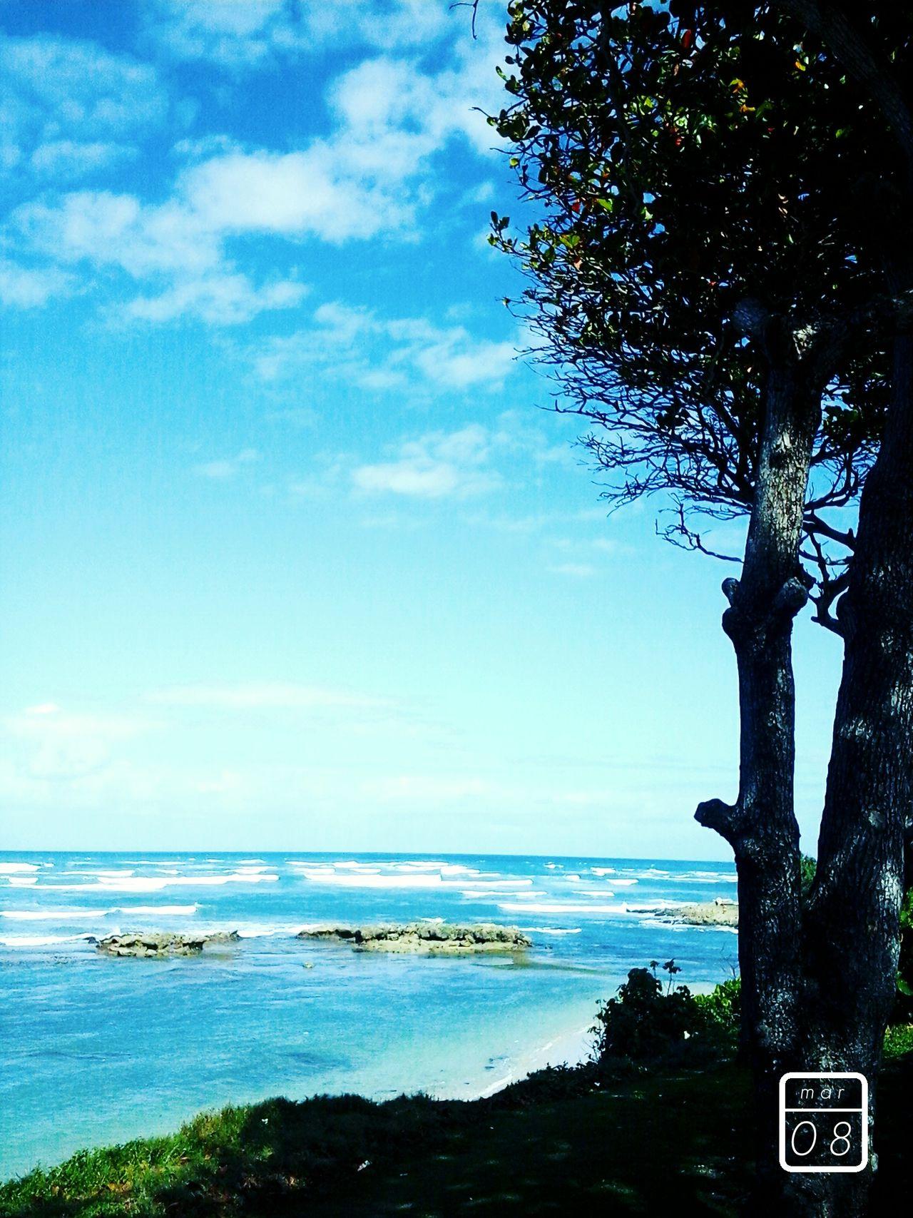 Beach Republica Dominicana