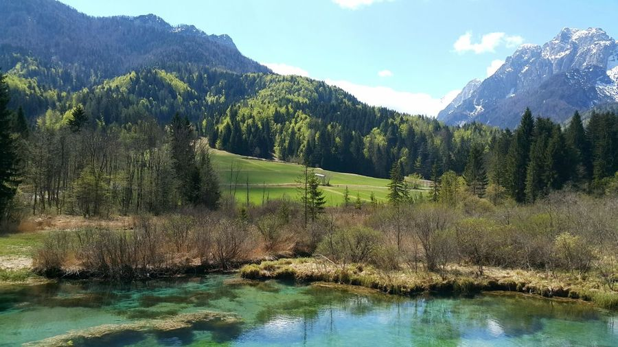 Zelenci, Slovenia Lake Lake View EyeEm Nature Lover Eyeemphotography Nature Landscape Water Mountain Mountain Range Mountains Green Color Outdoors Day No People Beauty In Nature Tree Scenics Sky Majestic Zelenci Slovenian Relaxation Miles Away