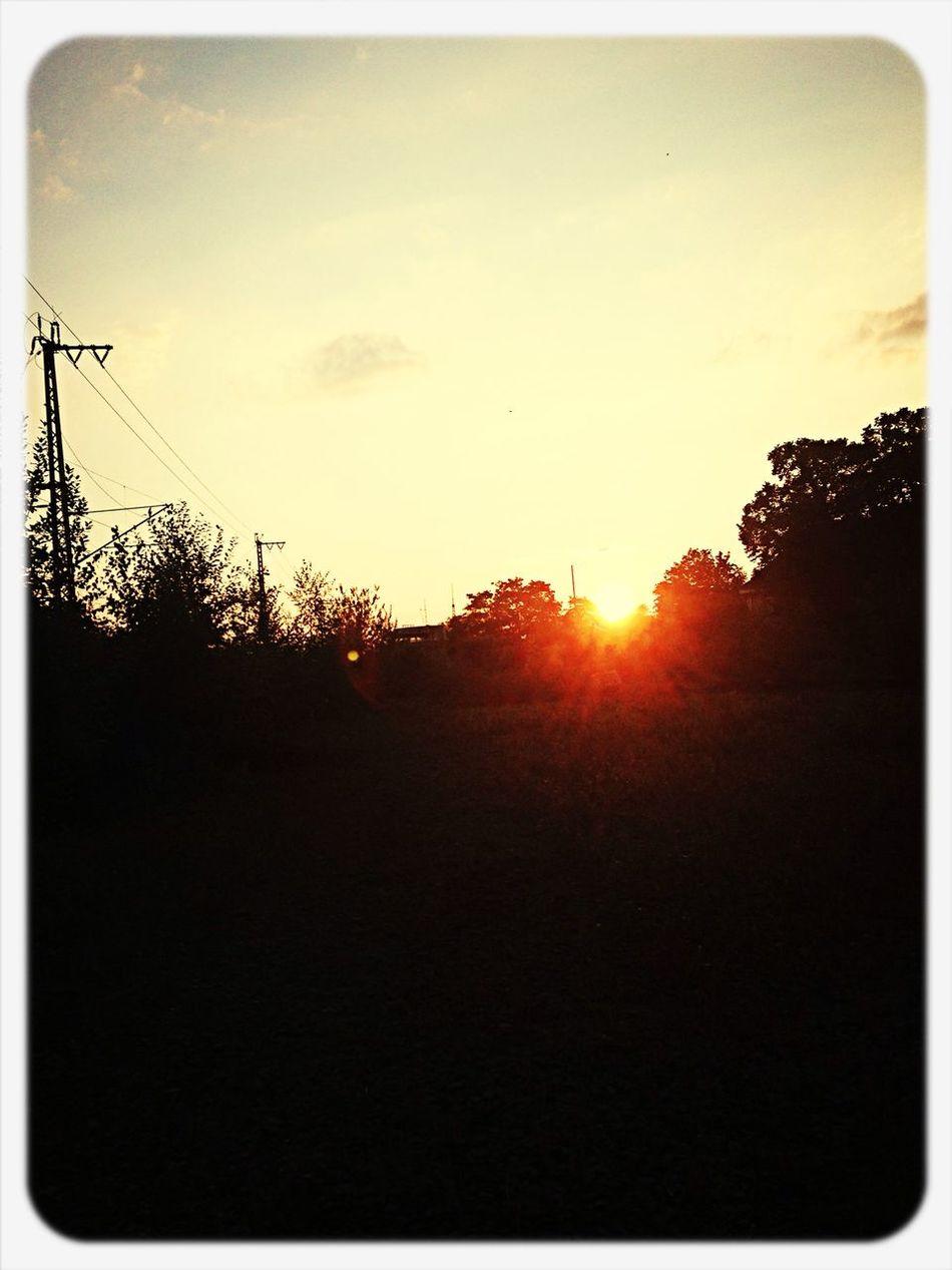 Hearth Of Ehrenfeld Sunshine ☀️ Enjoying Life