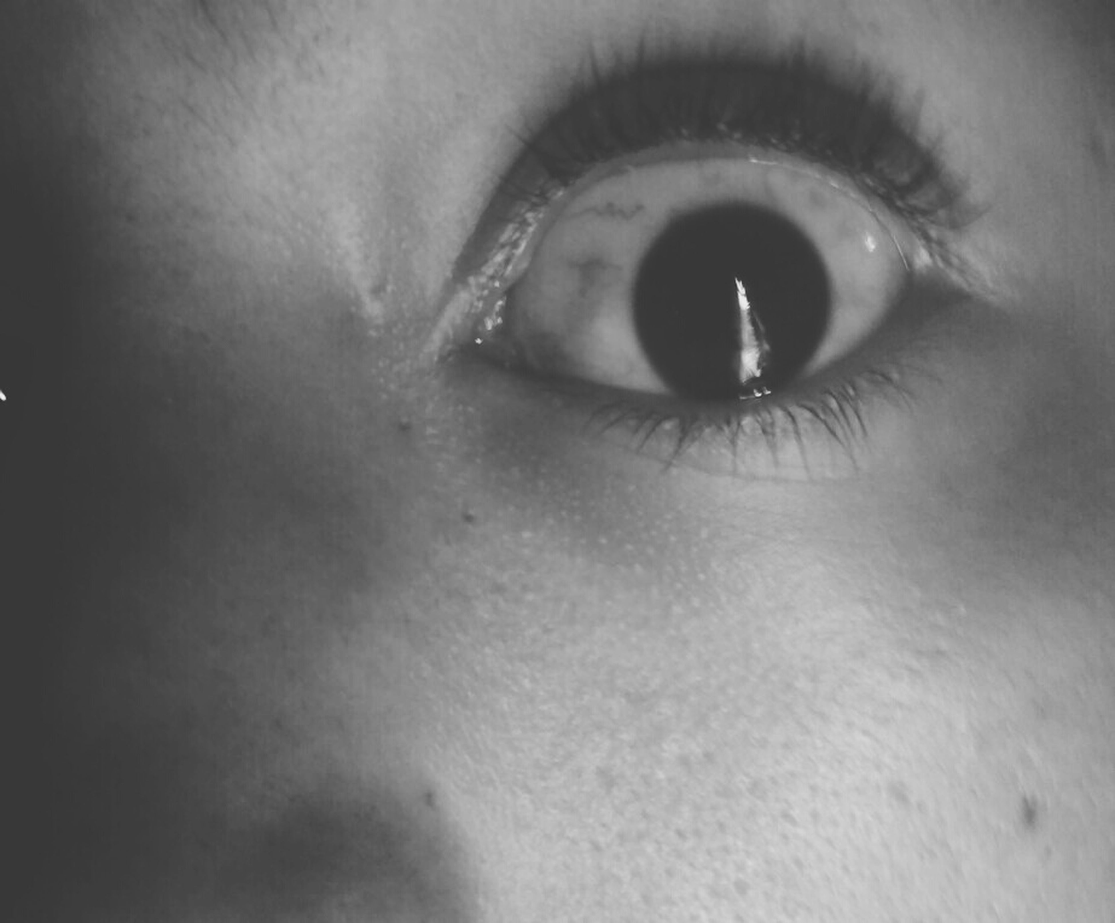 indoors, human eye, close-up, human face, human skin, eyelash, lifestyles, looking at camera, portrait, part of, eyesight, headshot, extreme close-up, young adult, sensory perception, front view, person