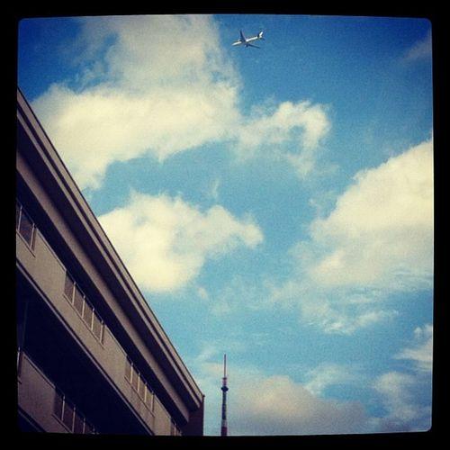六本木・東洋英和女学院の上空を飛ぶ飛行機