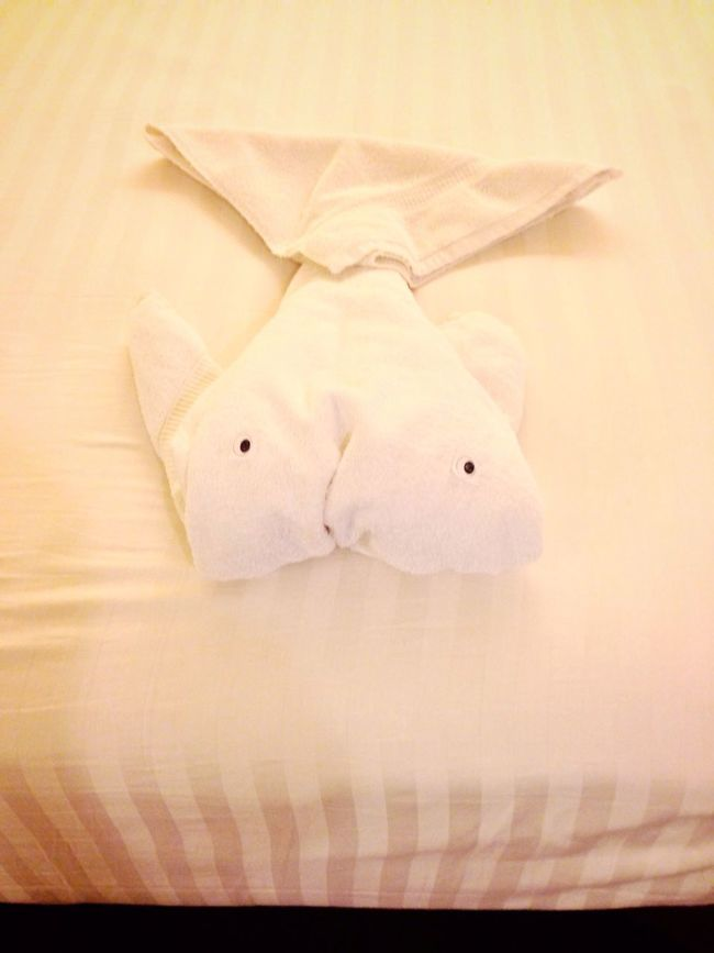 On A Ship Stateroom Towel Animal Hotel Room