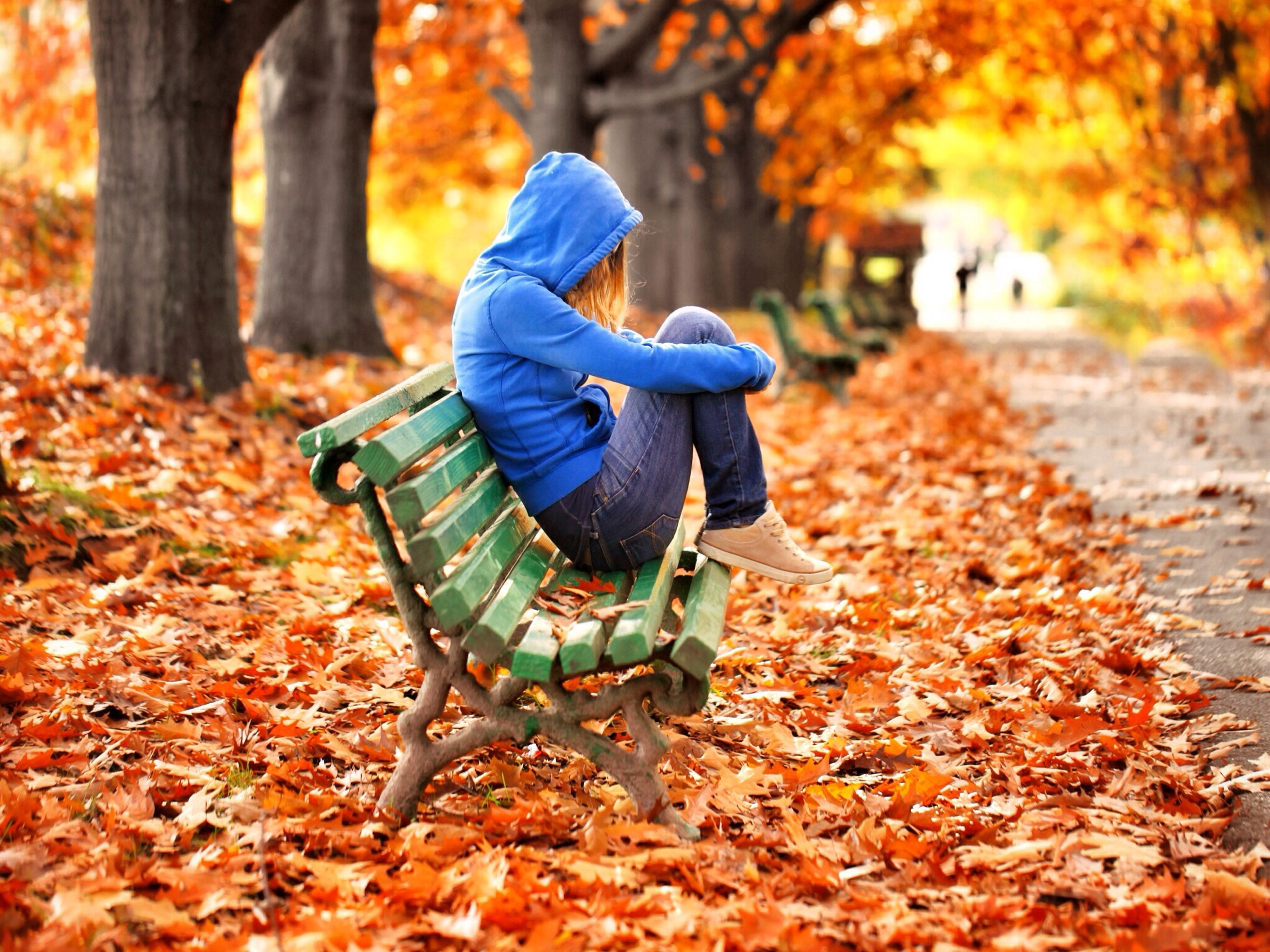 autumn, change, season, leaf, focus on foreground, lifestyles, leaves, leisure activity, dry, rear view, casual clothing, orange color, selective focus, nature, full length, day, men, field