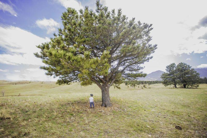 Exploring New Ground Explore Colorado Adventure Adventure Parenting Adventure Kids Terboimagingphoto Green Beauty Toddler