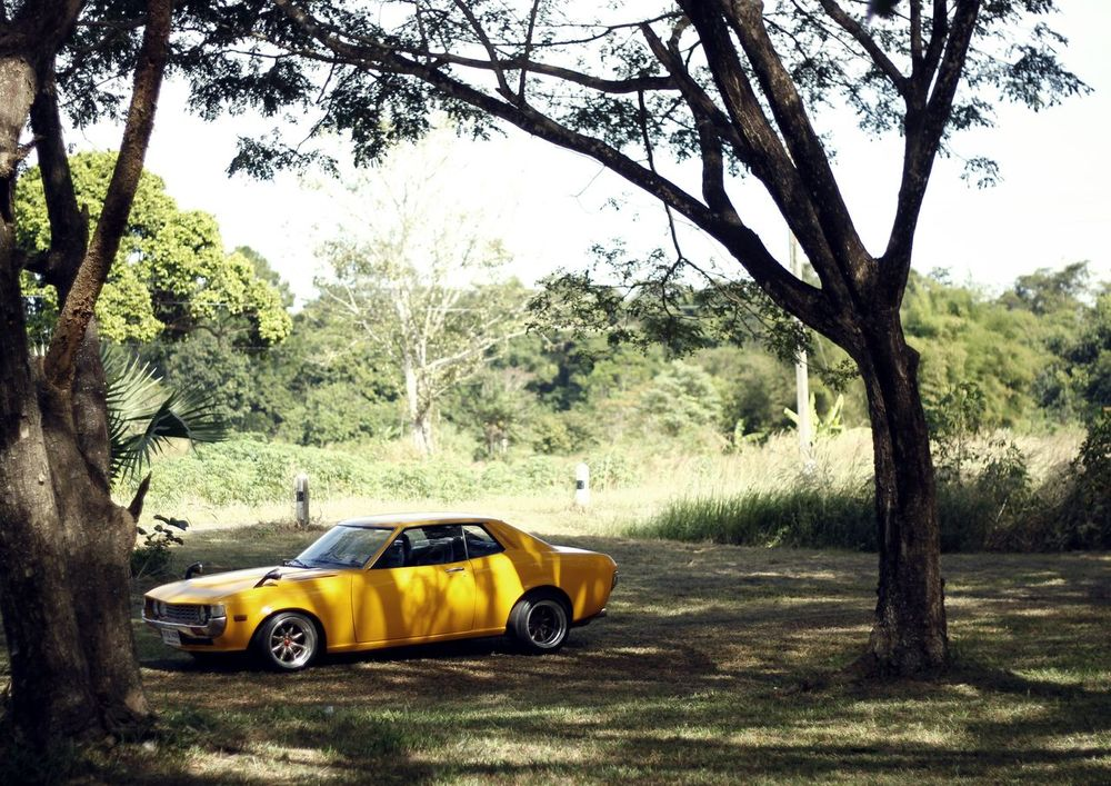 Toyota Celica Car Day Forest Land Vehicle Nature No People Outdoors Toy Car Toyota Transportation Tree Yellow Yellow Taxi