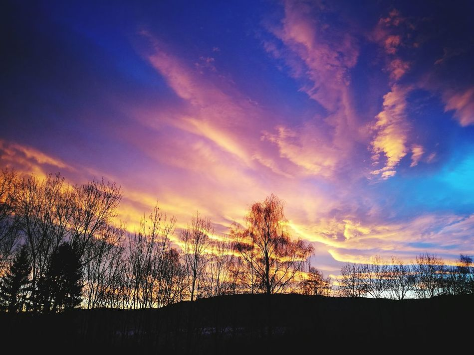 Sunset Sky Dramatic Sky Beauty In Nature Tree Cloud - Sky Silhouette Landscape Beauty In Nature Orange Color
