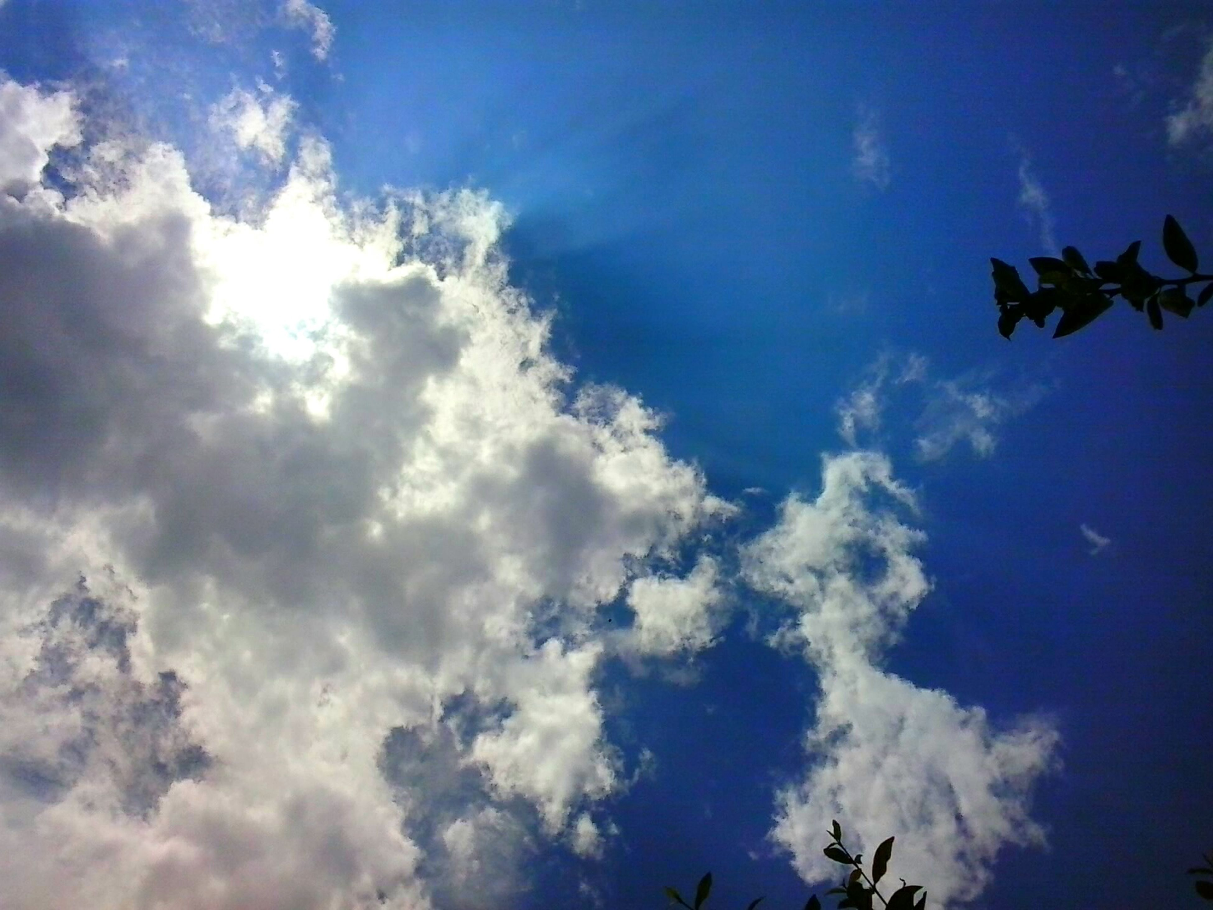 low angle view, sky, cloud - sky, blue, beauty in nature, cloudy, cloud, tranquility, nature, sky only, scenics, cloudscape, tranquil scene, sunlight, outdoors, day, no people, white color, idyllic, sunbeam