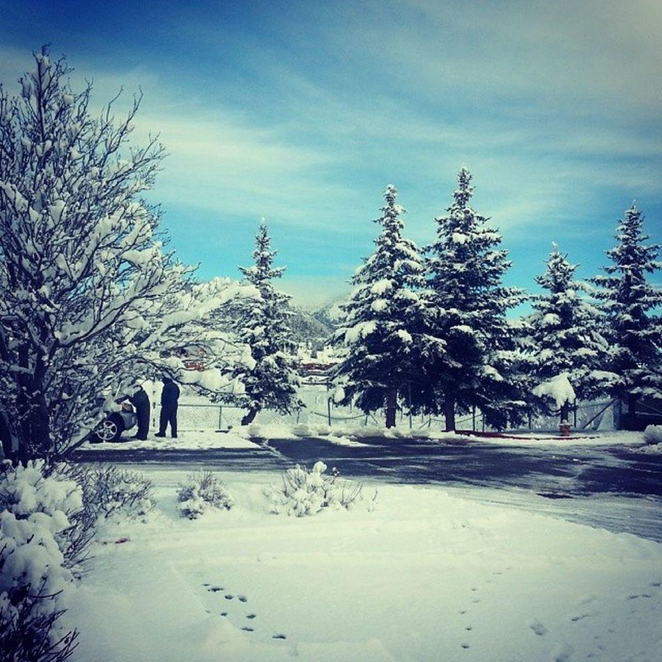 I'm in a Winterwonderland Rexeneroadtrip CAtoMD Day2