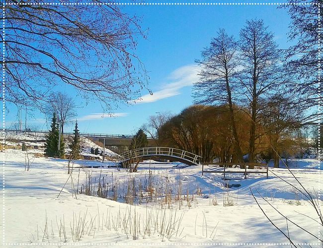 Warm Day Sunny Day Inthepark Arch Bridge Wooden Bridge Wooden Structure Arched Springtime Outdoors Park Outdoor Photography Still Snow Nopeople Sun Shining Nature Photography Trees And Sky Trees And Bushes Concrete Bridge Double Perfect Day Kotka Finland