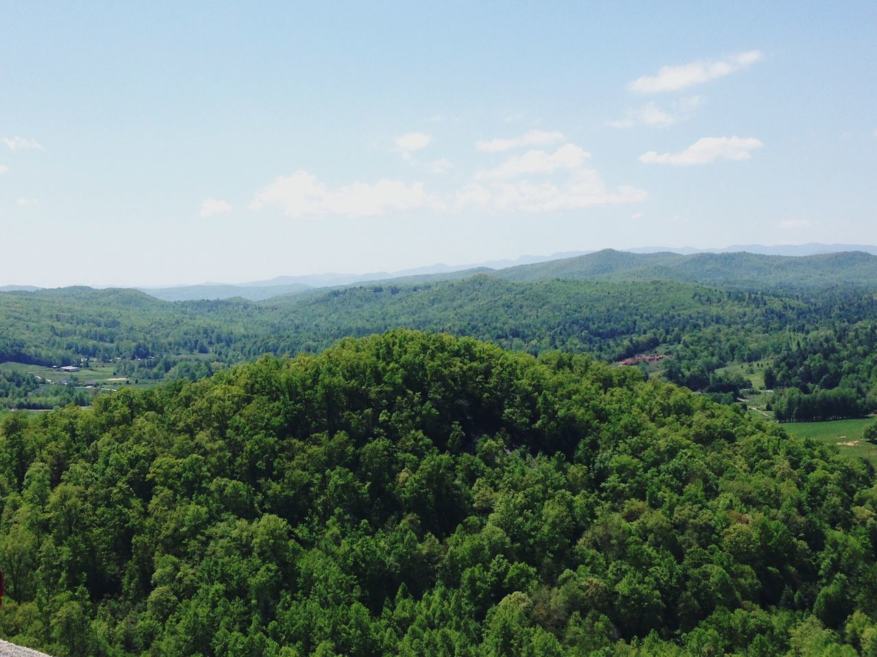 Blue Ridge Mountains Wnc Mountains Treetops Forest Hiking Nature Green Scenery Perfect Day