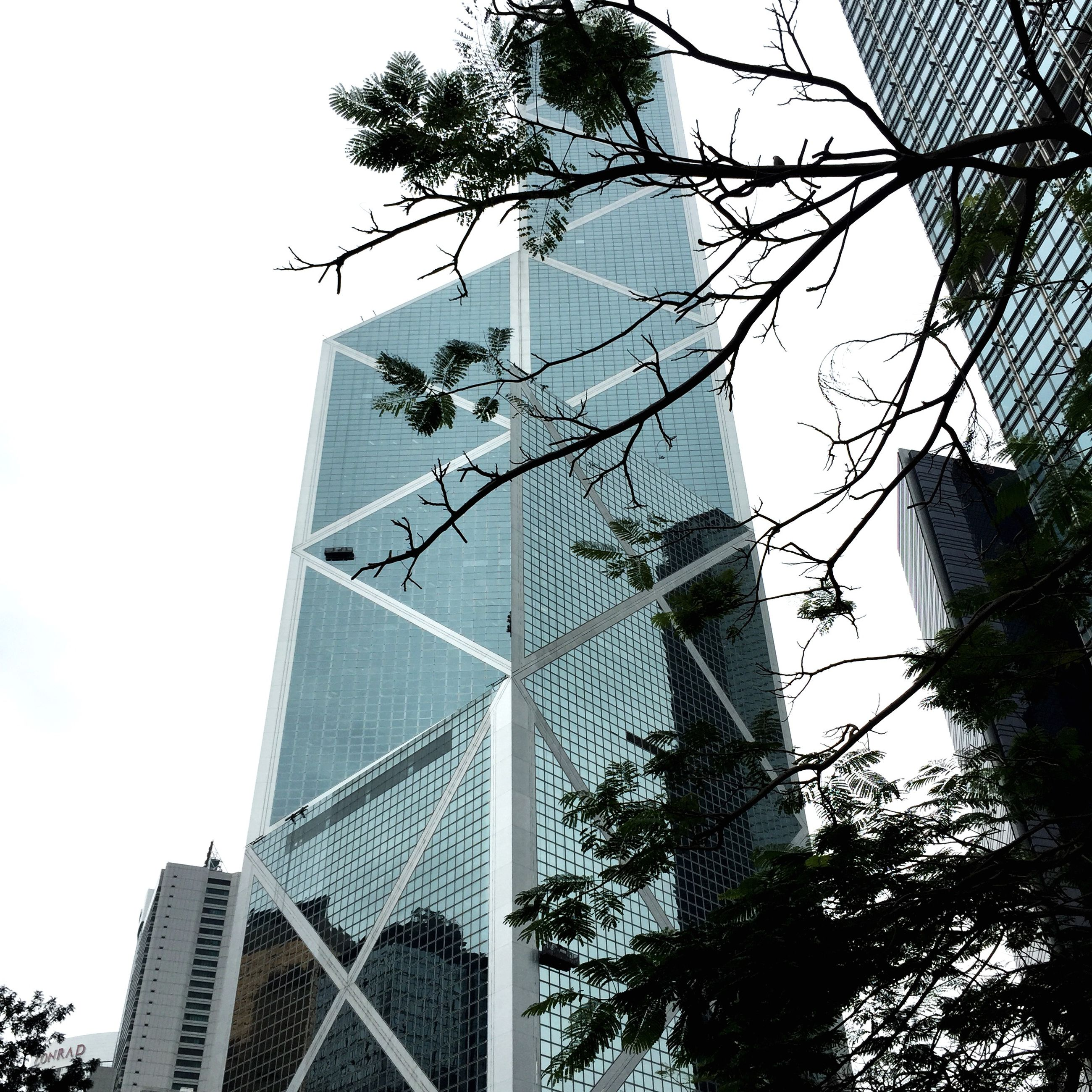 architecture, low angle view, built structure, building exterior, skyscraper, tall - high, tower, modern, city, office building, clear sky, capital cities, tree, travel destinations, famous place, glass - material, tall, international landmark, building, sky