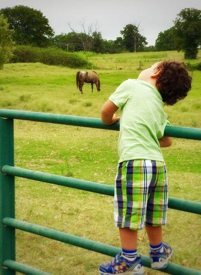 come here Tex! I want to ride you please 💛 Sweet Moments Summer2015 Children Photography Young Lad I Love Horses I Love My Appaloosa Appaloosa I Love Appaloosa's Horses Child Photography