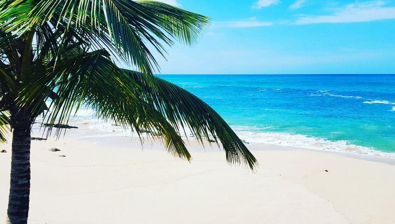 The beautiful island of Puerto Rico Puertorico Island Beautiful Beach Goodmorning World  Serenity Waves Nature Life Is A Beach Isladelencanto Islabonita Love