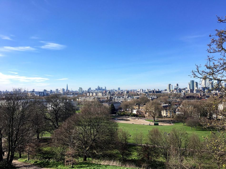 Cityscape Tree Sky City Urban Skyline London Greenwich Park Citypark Greenwich Park Spring Sunny Day View