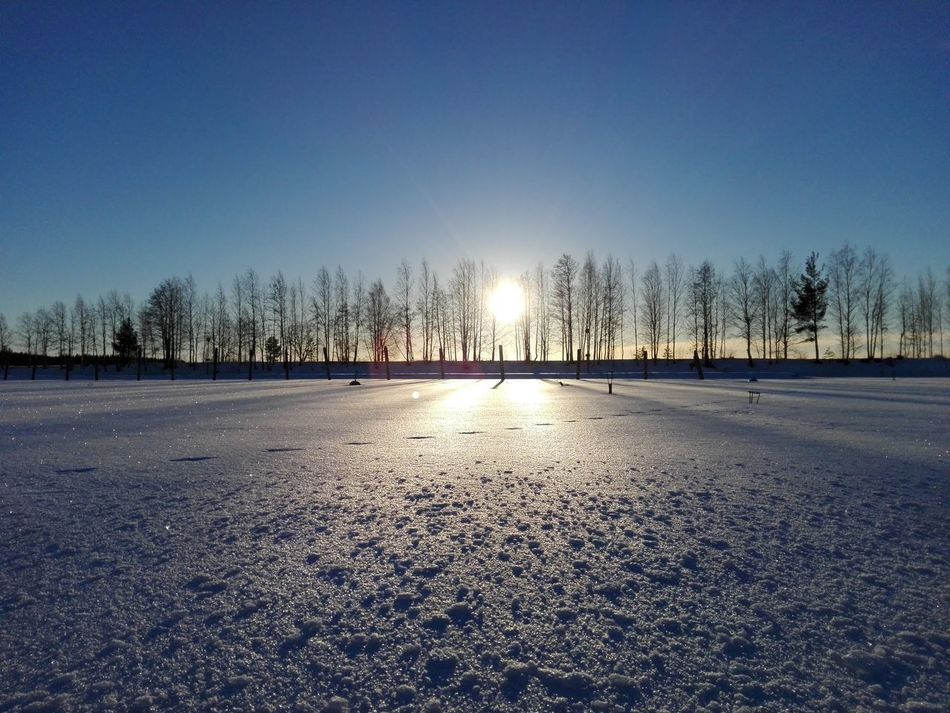 Something beauty Something Beautiful Outdoors Beauty In Nature Photography Snow ❄ Landscape_photography Sunlight Naturelovers Beautiful Nature Winter Landscape Nature Photography Photographer Finnish Nature Naturebeauty Wintertime Cold Temperature