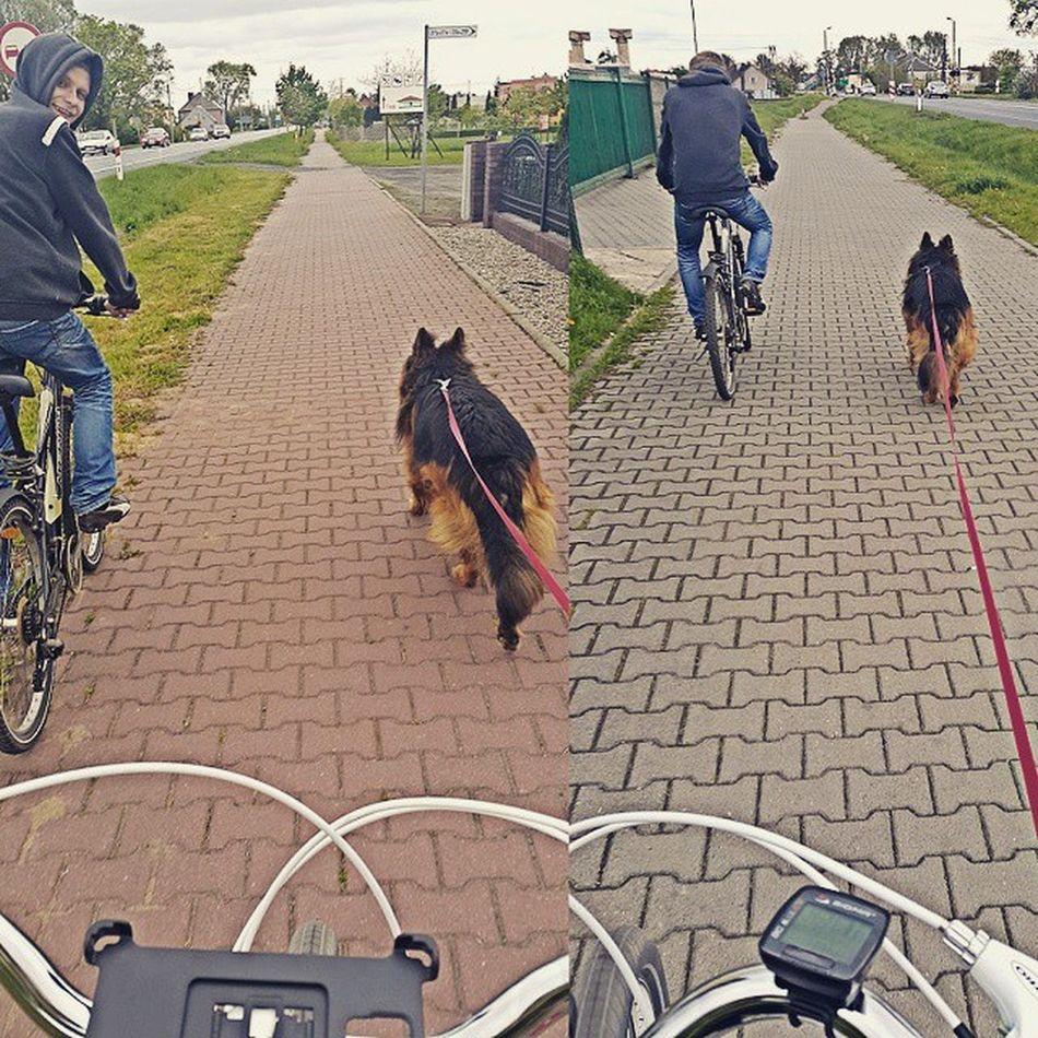 Spacerek z Moimi Małpami Kocham Ich 3 .51 km Uwielbiam Takie Dni Cudnie Zimno ale Pieknie Bardziej Zmotywowana Fit Dog Animal Razor Bartek Instadog InstaBboy Bike