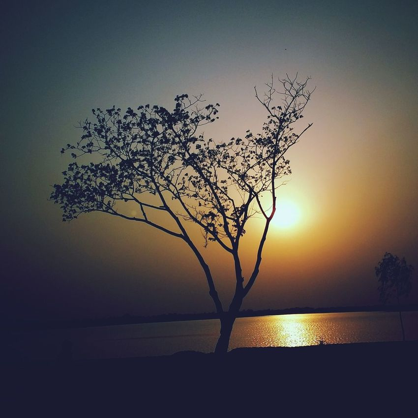 This Is My Art!!! I love this couz this give me inspiration of doing n clicking more pics .... i love this pic .... pls comment if you like it. Nature_collection Evening Light Evening Glow Evening Sunset Natureisthebestdesigner Naturegifts 🌈