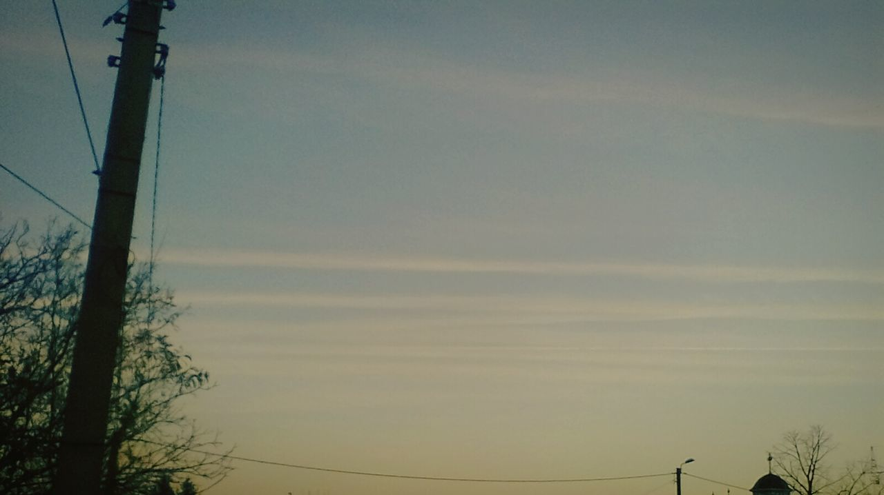 cable, sky, nature, no people, outdoors, tree, low angle view, technology, beauty in nature, electricity pylon, bare tree, day, telephone line