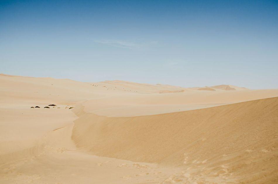 Dune Dunes Namibia Nature Outdoors Sand And Sky Sand Dune Sand Dunes