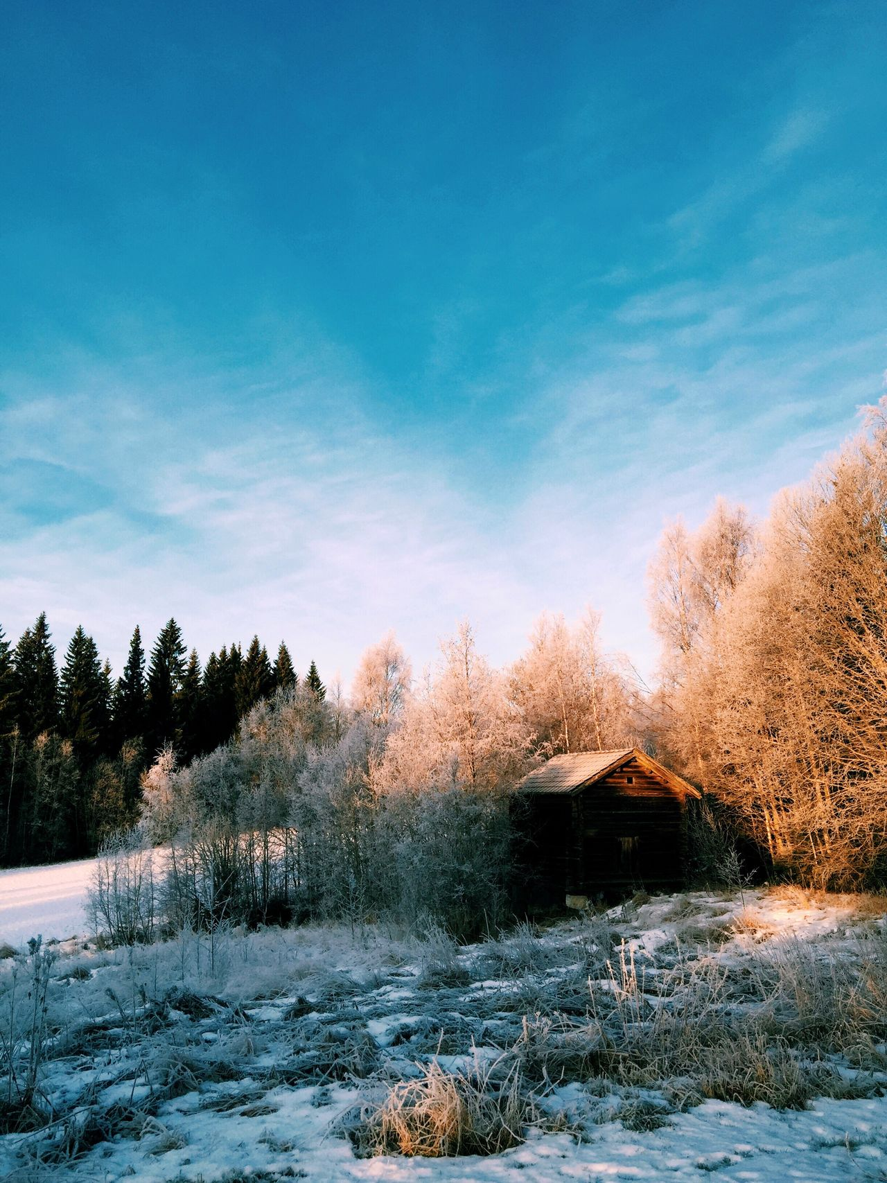 Just had to post this again from another angle. Winter Wonderland Wintertime ⛄ Winter Snow Sweden EyeEm Best Shots Barn Retrica IPhoneography Showcase: January