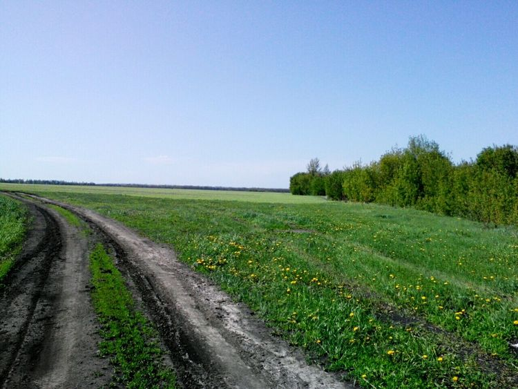 Russian Nature First Eyeem Photo Russia Belgorod