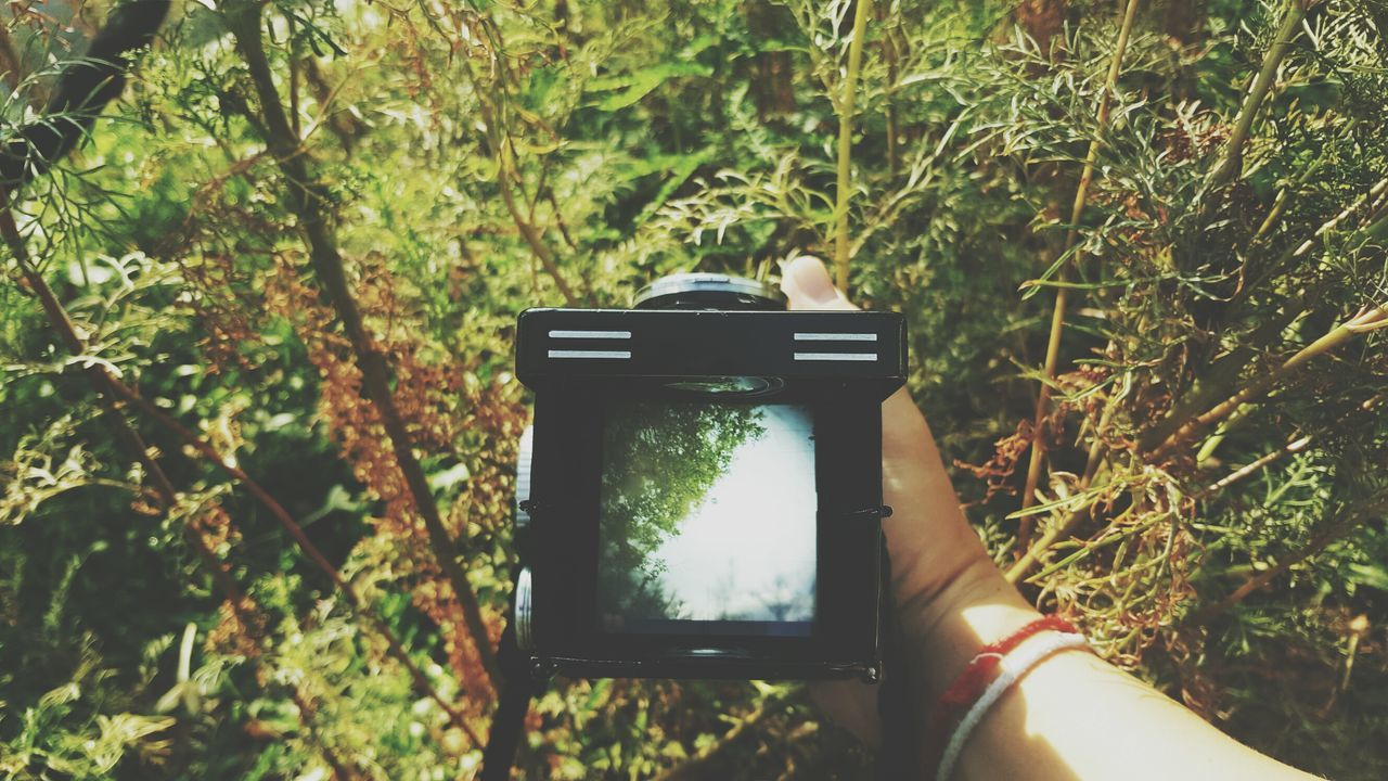 Photography Themes Photographing Human Hand Camera - Photographic Equipment Holding Human Body Part Outdoors Device Screen Grass Tree Vintage Camera Landscape Outdoor Photography Waistlevel Waistlevelfinder Travel Journey Viewfinder Film Filmcamera Day Nature Rolleiflex Rolleiflex2.8E Rollei