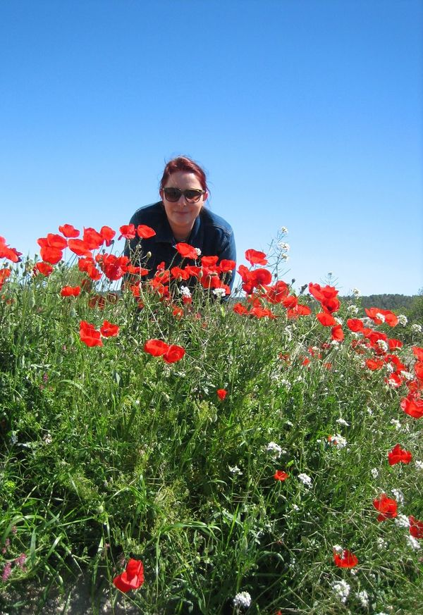Nature Amapolas Rojas Outdoors Flower Plant Growth Fragility Beauty In Nature Freshness Petal Amapola Blooming Poppy Red Flower Poppy Flower мак Red Low Angle View Amapolas Clear Sky Happy Person Happy Woman Flower Field Field The Portraitist - 2017 EyeEm Awards