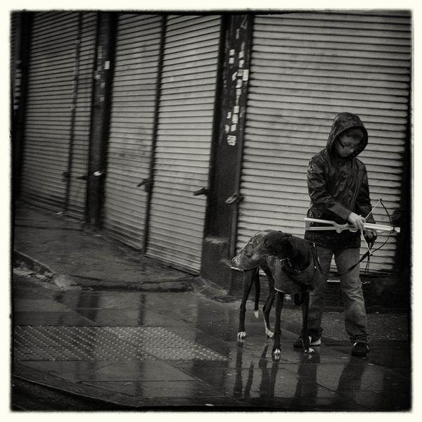 Boy with Crossbow and Greyhound Taking Photos Streetphotography Blackandwhite Fujifilm X-Pro1 Autumn London übercoolStreet Melancholic Landscapes
