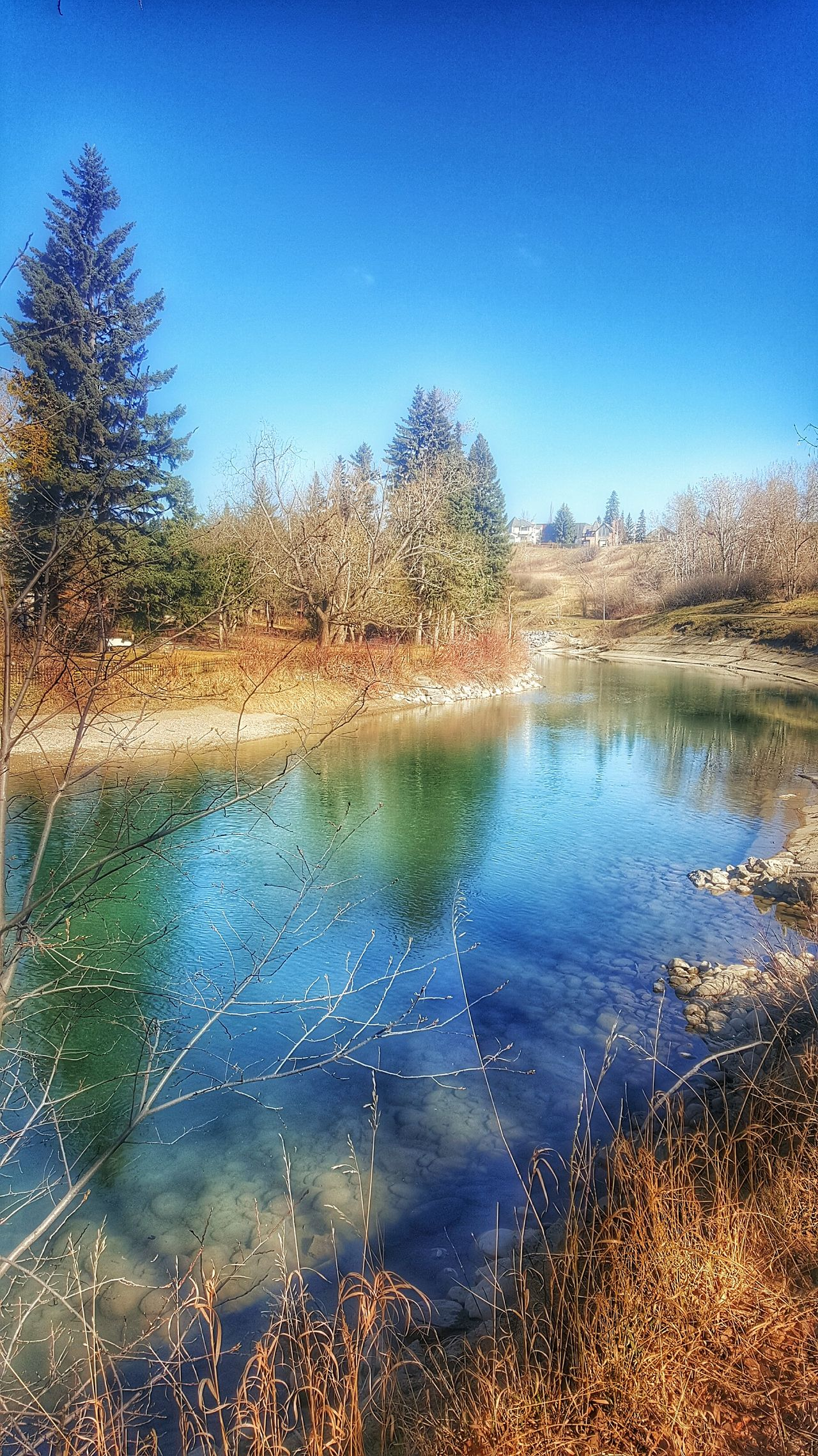 Serene Outdoors Trees Reflection Trees And Sky Enjoying Life Reflections In The Water Blue Sky Spring Day Springtime Serenity In The Sunshine Spring Walking Around The City