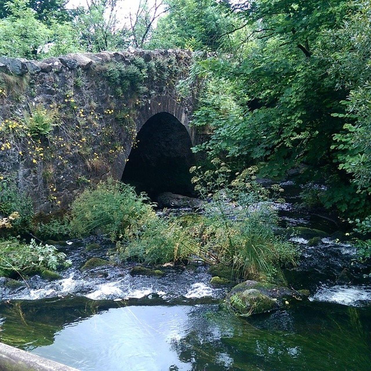 Stream Bridge Beautiful Nature Ireland Beauty Northernireland DiscoverNI