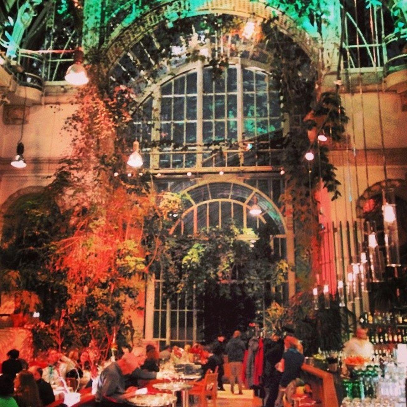 Nice Bar Restaurant Burggarten palmenhaus vienna austria viennaonly worldplaces