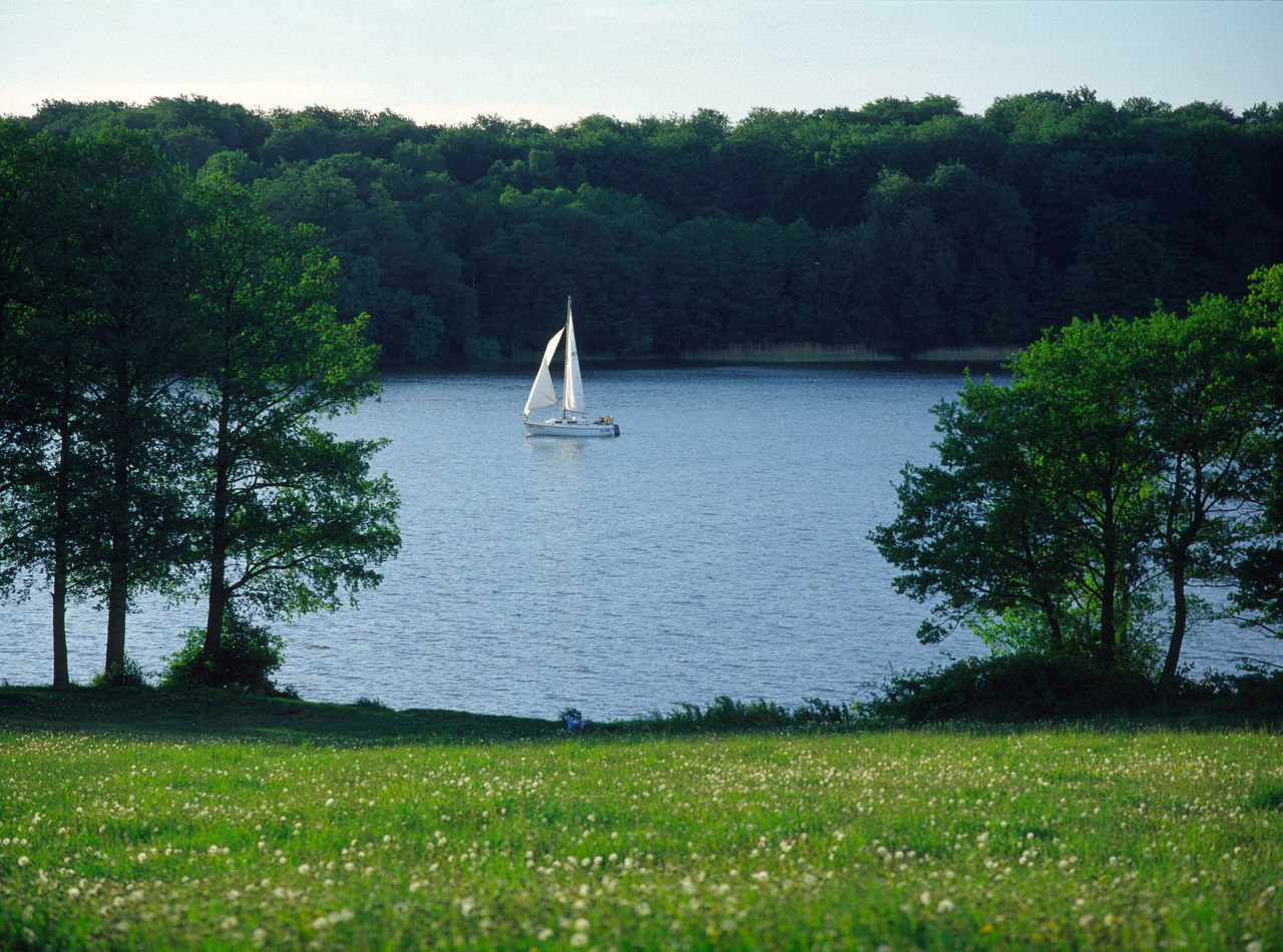 Beauty In Nature Day Green Color Growth Jeziorak Jeziorak Lake Nature Nautical Vessel No People Outdoors Sailboat Sailing Scenics Tranquil Scene Tranquility Warmia Water Yacht Yachting