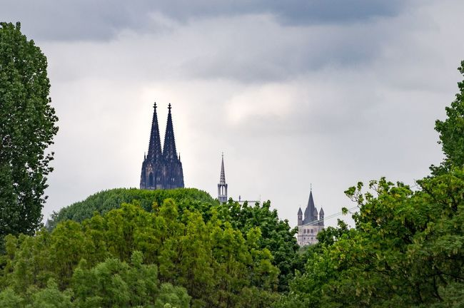 Köln Cologne Cathedral Cologne Cologne , Köln,  Architecture Colognecathedral Koeln Kölner Dom Kölnerdom Domspitzen Cathedral Spires Treetops Bäume Trees Framing Framing The View The Great Outdoors With Adobe The Great Outdoors - 2016 EyeEm Awards The Great Outdoors