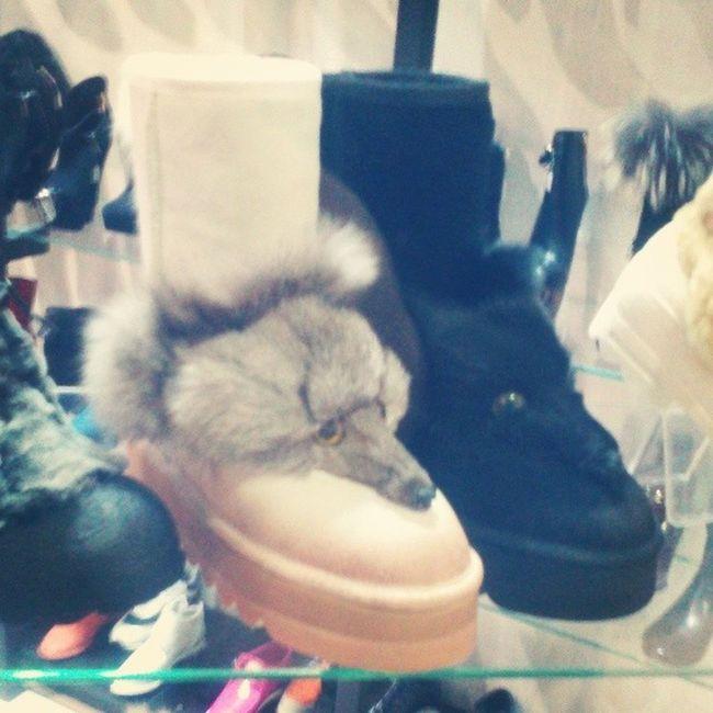 Fashion Fashionable Instafashion Instafail fashionstyle fashionstudy fashionblogger outfit shoes highheels heels stilettos boots footwear sandals brogues laces instashoes shoesoftheday fail shoe tagsta tagsta_fashion