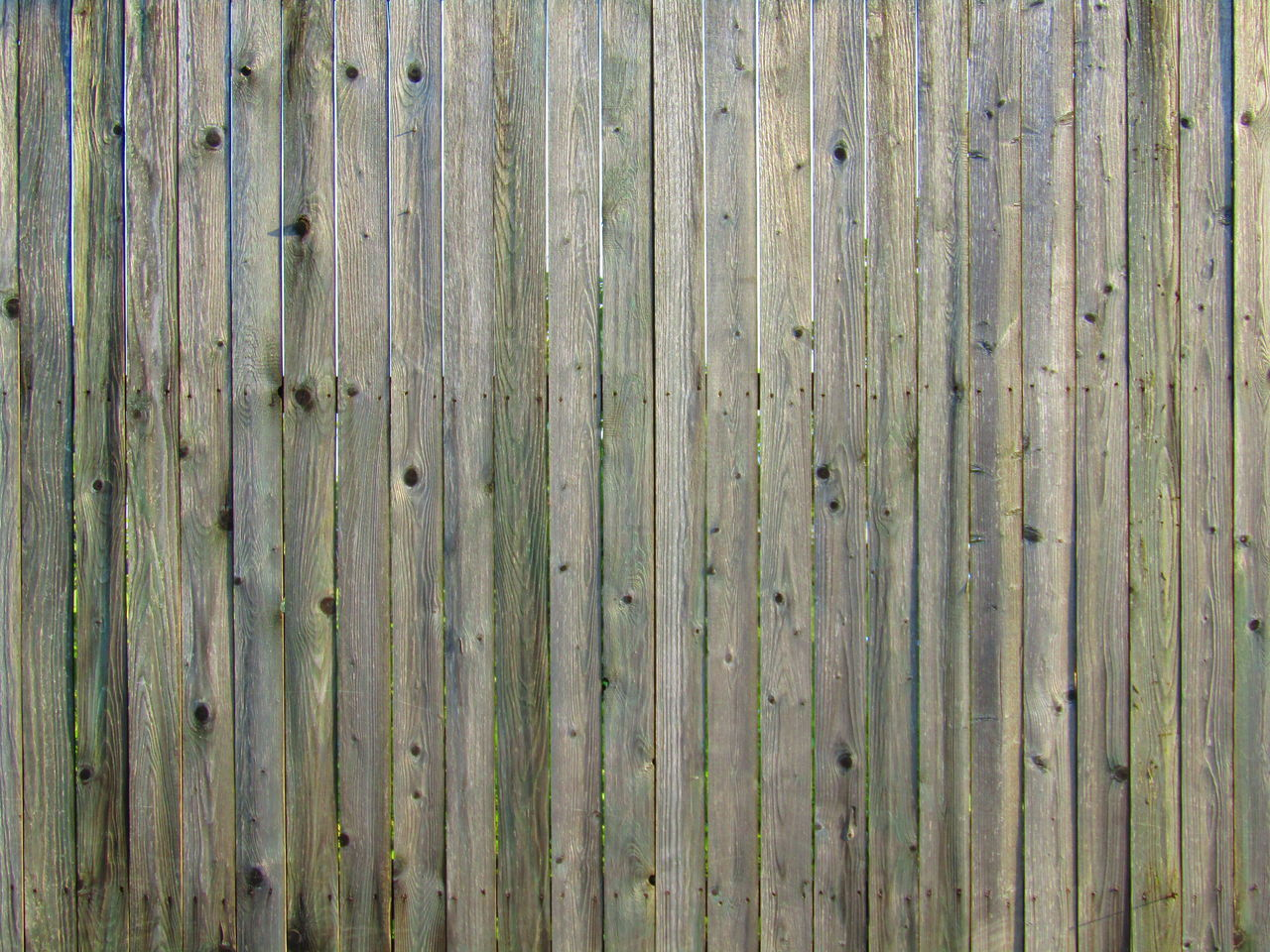 Pattern Backgrounds Striped Textured  Full Frame Weathered Wood - Material Timber Outdoors Abstract Wood Grain Paint Wood Paneling Close-up Hardwood No People Day Wand Wall