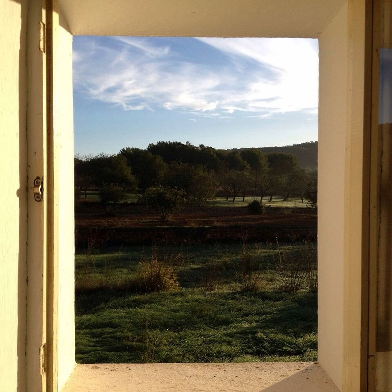 Window To The World Good Morning Ibiza Campo Life Nature View Ibiza Landscape Hay Bales Silence Peaceful Green Grass Trees And Sky Morning Dew Morning Light Old Stone Wall Creative Light And Shadow Deceptively Simple Still Life Photography Still Life