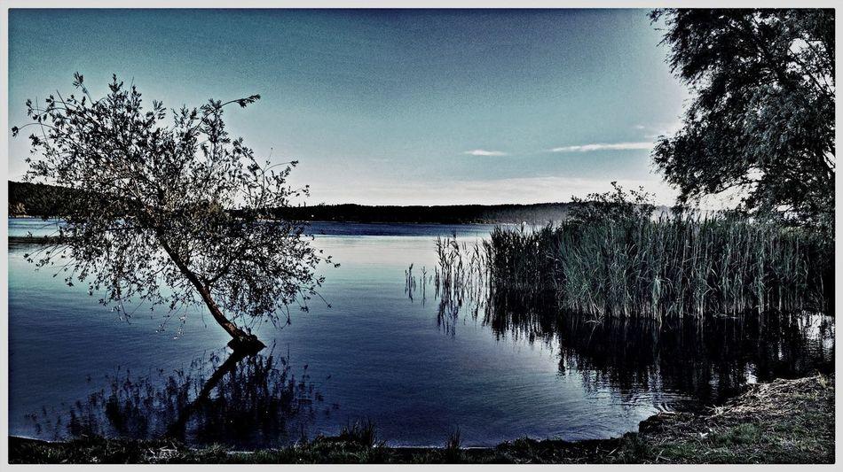Un'angolo di serenità. Viterbo Lago Di Vico Bella Italia