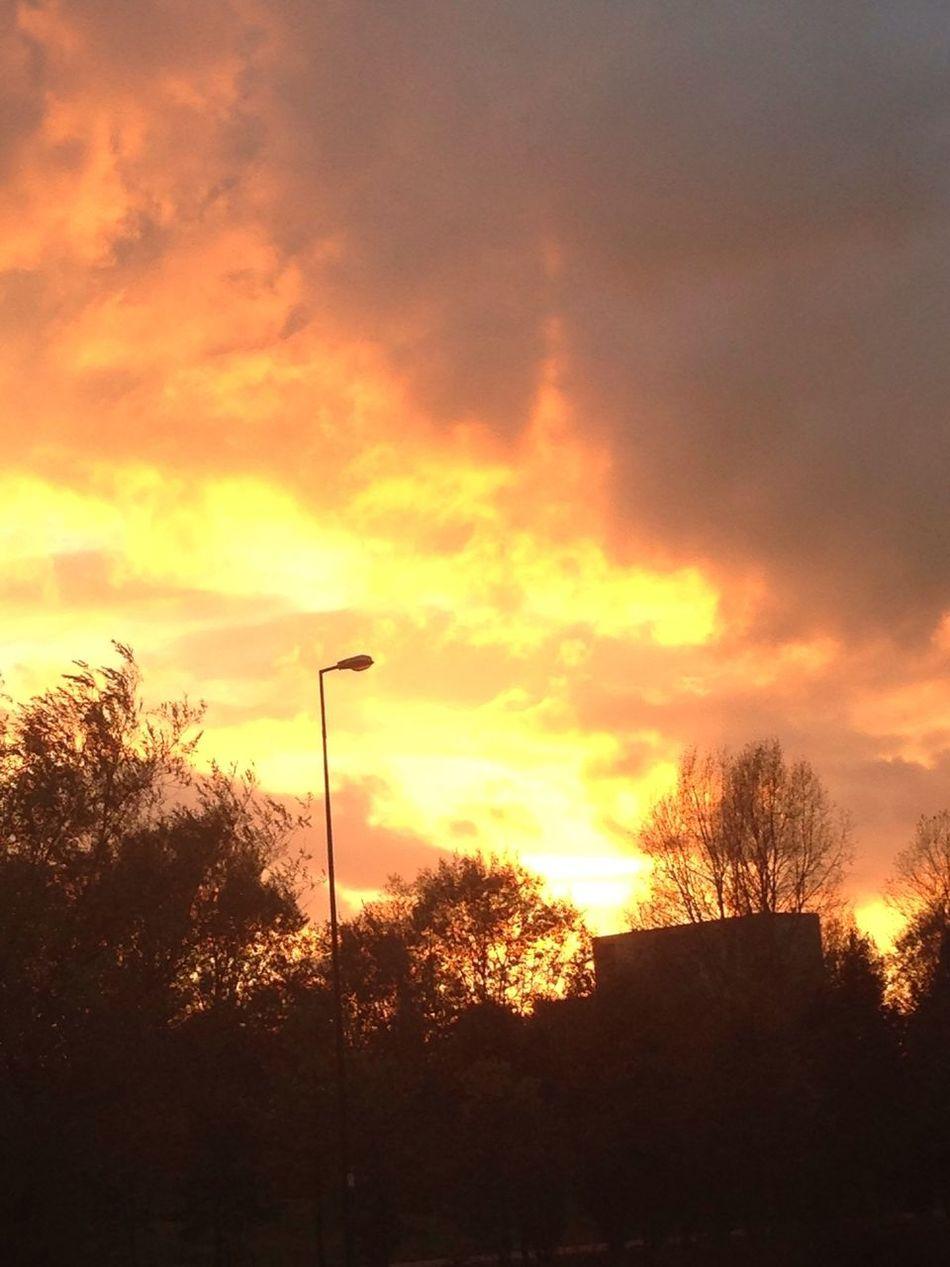 Right now autumn sunset