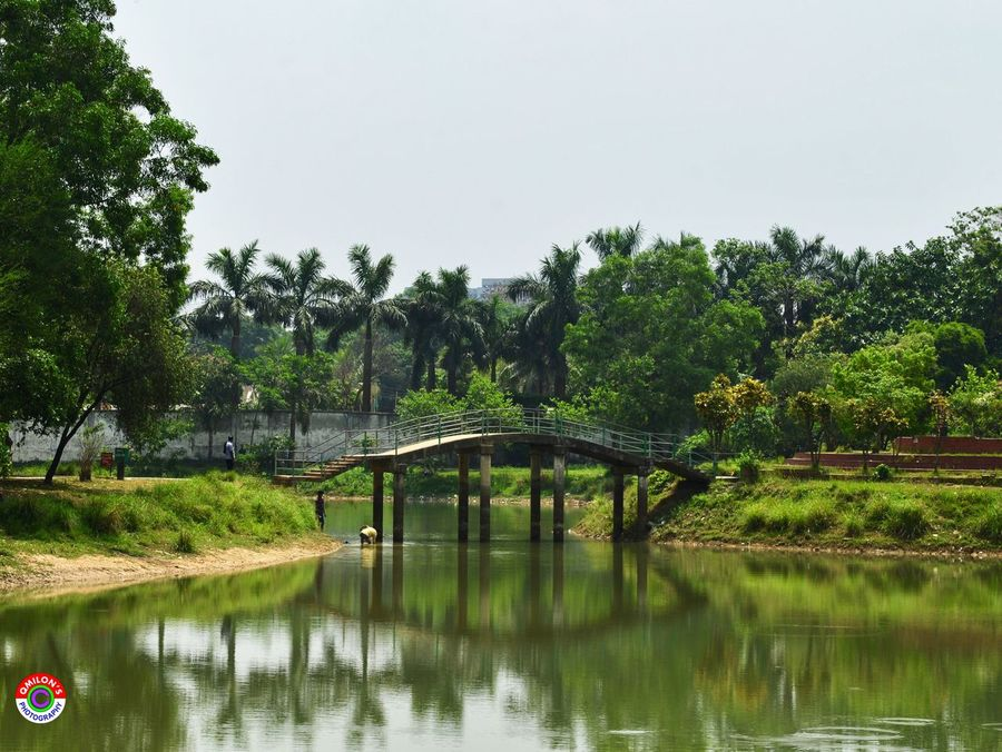 Bridge Bridge - Man Made Structure Water Tree Reflection Green Color Clear Sky Tranquil Scene Architecture Landscape Landscape_Collection Landscape_photography Landscape_lovers