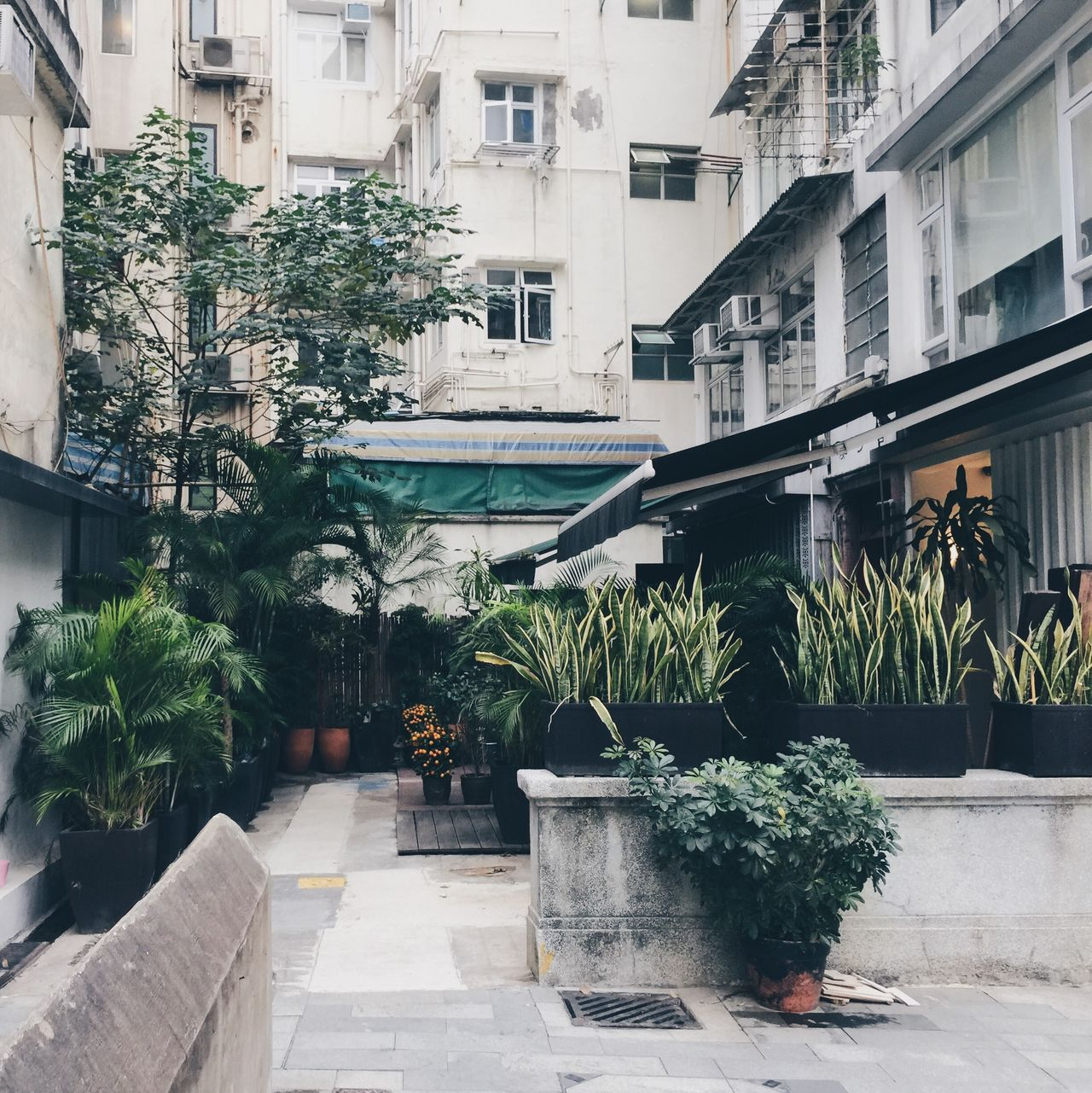 Beautiful stock photos of hong kong, Architecture, Building Exterior, Built Structure, Day